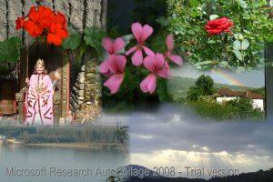 Proletina_2014_autocolag_AutoCollage_7_Images